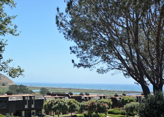 Del Mar Summer Rental - Ocean View!