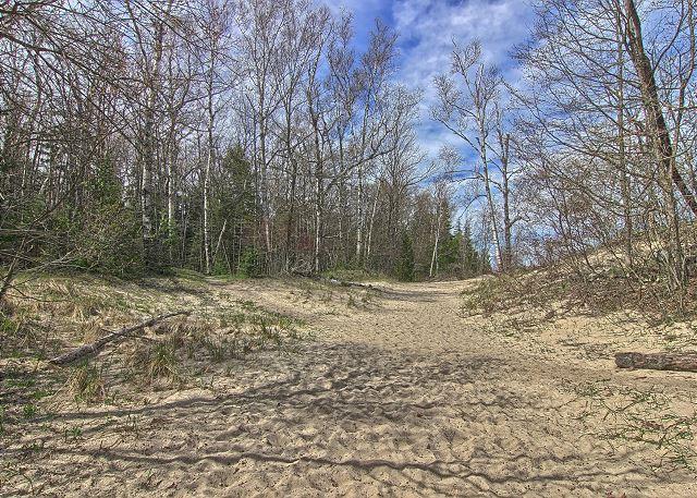 Sandy Trail to Lake Michigan