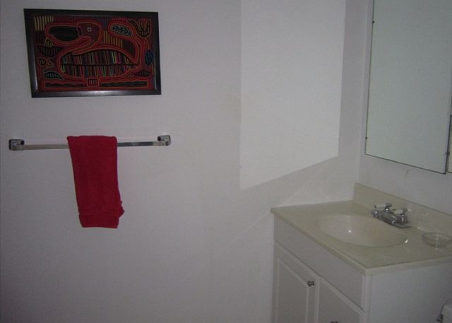 Guest Bathroom (Lower Level)