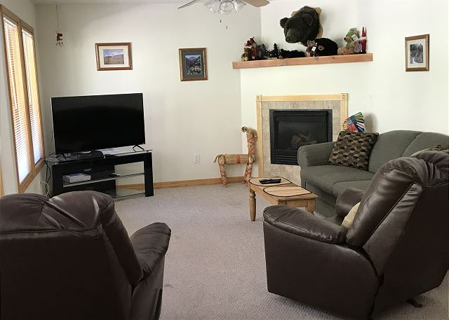 Updated Condo - Pet Friendly - Mountain Views
