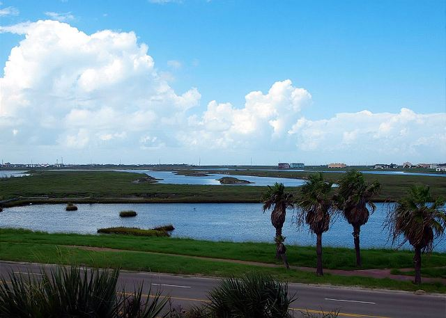 Coastin Ain't Easy is an ALL NEW UNIT at Beach Club Condominiums! - Corpus Christi, Texas