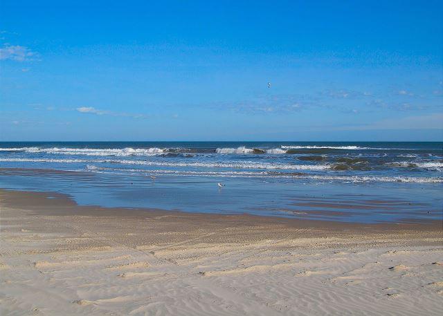 Corpus Christi (TX) United States  City pictures : Corpus Christi, TX United States Beach Walk 023 | Padre Escapes