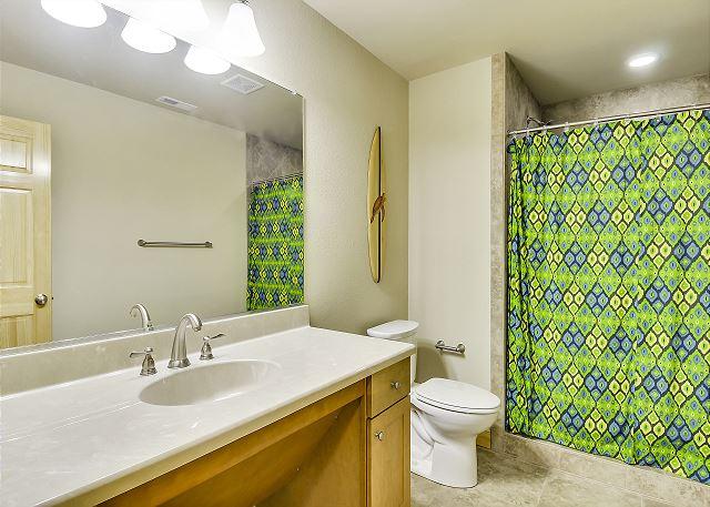 Hall Bath Handicap Accessible - Ground Level