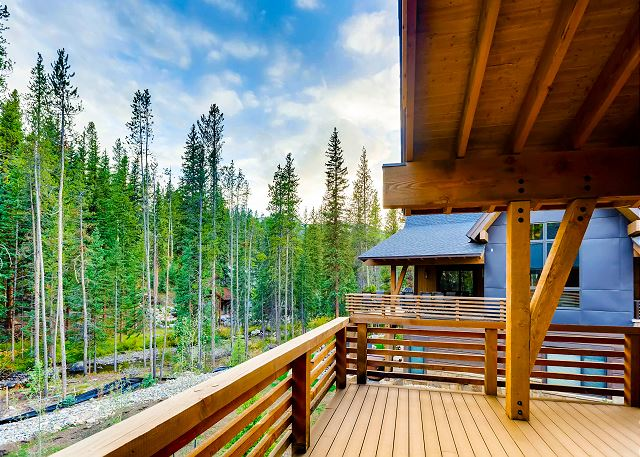 Top level deck forest views