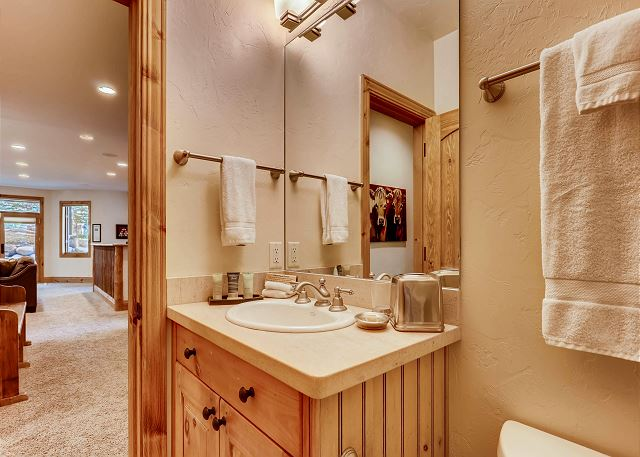 Lower full hall bathroom