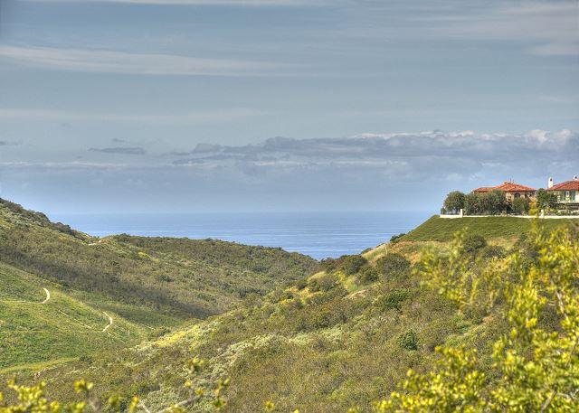 Hills of Newport