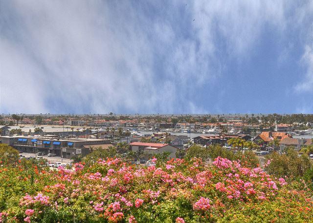 View of Balboa