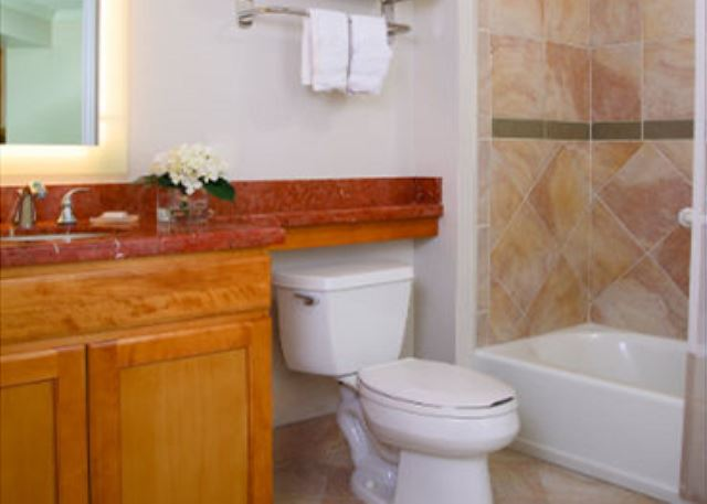 Bathroom #2 with toilet and tub/shower