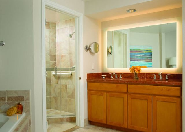 Master Bathroom featuring a luxurious oversize soaking tub, sepa