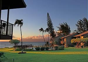 Polynesian Shores #1961120