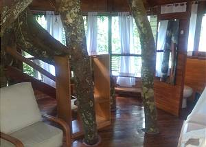 Treehouse 11  - Swiss Family Robinson Sleeps up to 6 in 3 queen beds