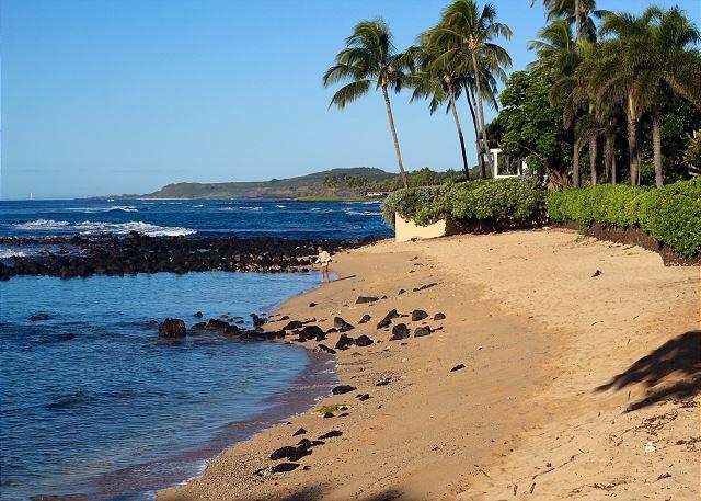 Baby Beach steps away from Ho'ona Hale