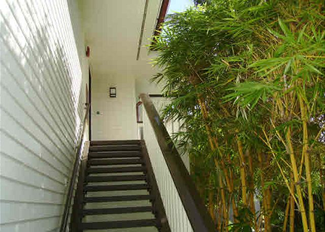 Bamboo lined stairwell to Poipu Kapili 20 complete with private