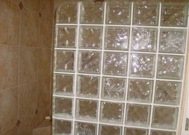 Master shower with tile and glass block.