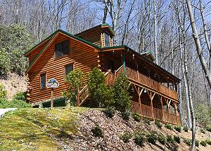 Maggie Valley Tree Top Cabin