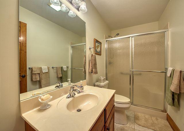Guest Bath on Main Level