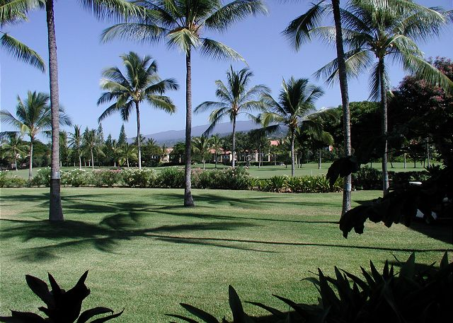 View from the large lanai