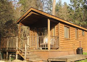 New! Creek Cabin of Hawkins Bar - Right on the Creek