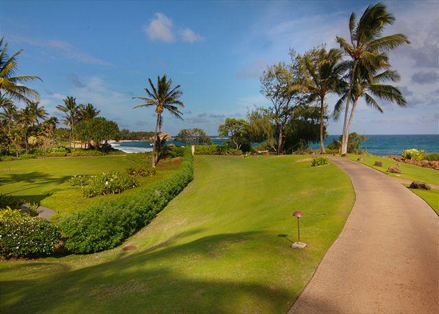 Maui Hawaii Vacations