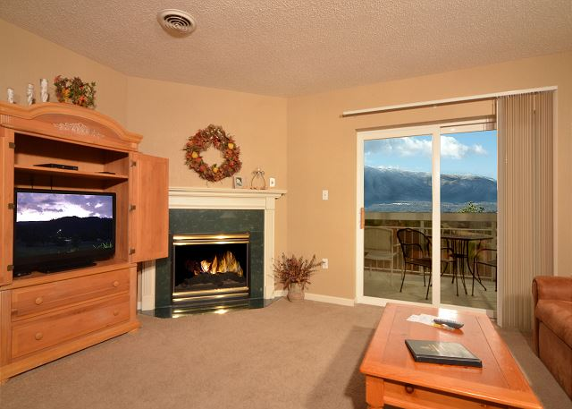 Flat Screen TV and Seasonal Gas Fireplace in Living Room
