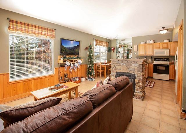 Spacious open floor plan with seasonal fireplace, flat screen TV.