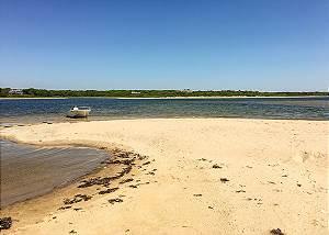 Oyster Pond  Pond Side