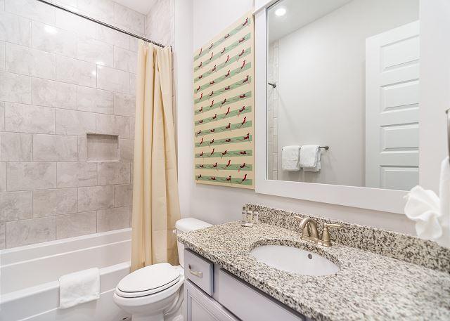 Guest Bath (shower/tub)