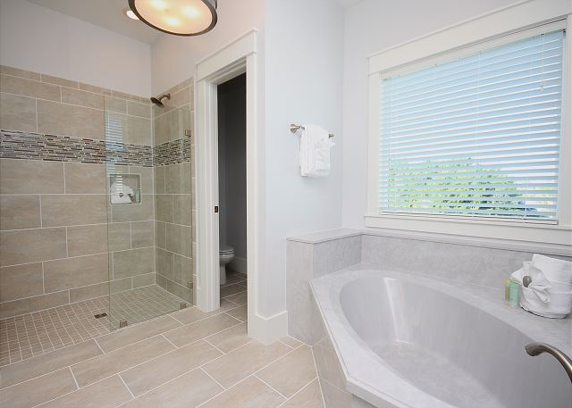 Master Bath with Garden Tub & Stand Alone Shower
