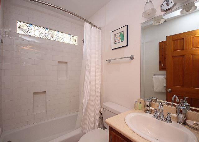Downstairs Guest Bath/Shower