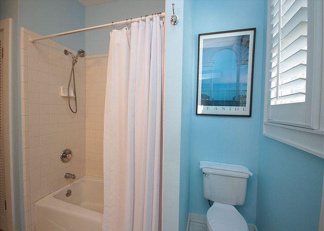 Full Bath/Shower Combo