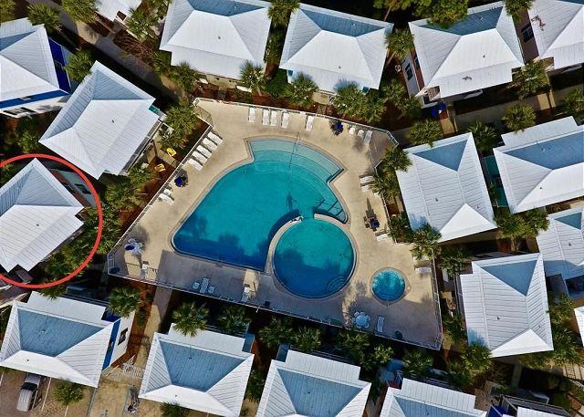 Three Palms Overlooking the Community Pool