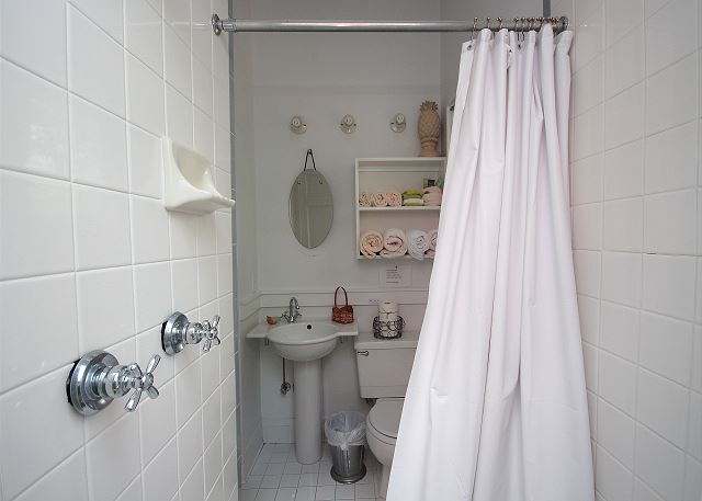 Guest Bath (shower only)