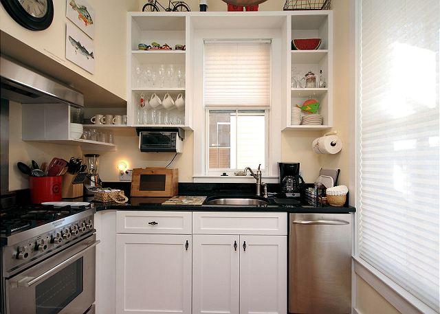 Gourmet Stainless Kitchen