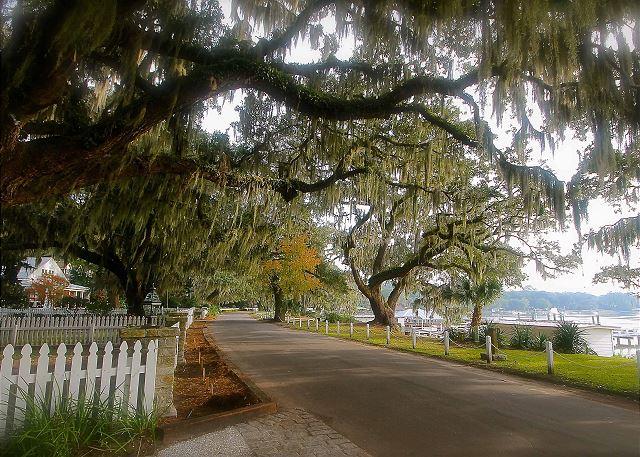 Isle of Hope Bluff