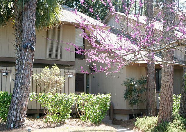 South Beach Villa 1402 Picture