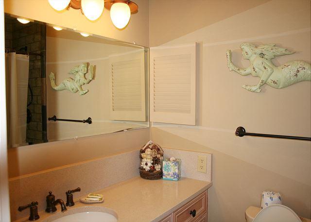 Fairway Lane 71 - Master Bath with Shower - HiltonHeadRentals.com
