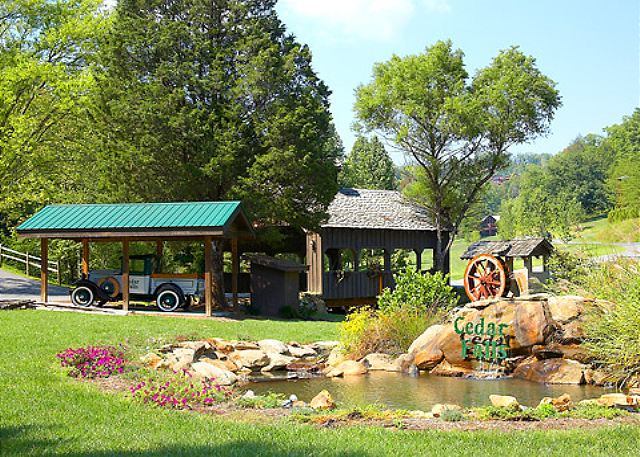 Sevierville, TN United States - CEDAR FOREST   Smoky Mountains ...