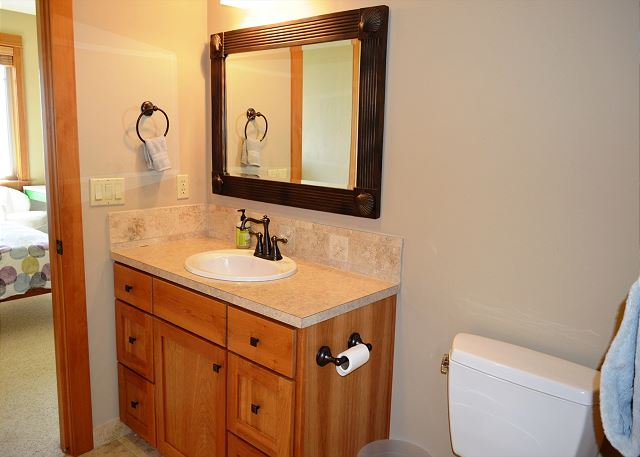 lower level private bathroom with a large sit down shower and walkin closet
