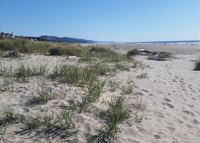 Manzanita offers a long wide sandy beach ideal for evening campfires, flying kites, building sand castles, and leisurely walks.