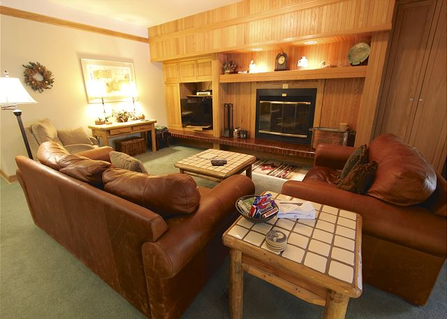 The living area features a flat screen TV, wood-burning fireplace and a queen-sized sleeper sofa.