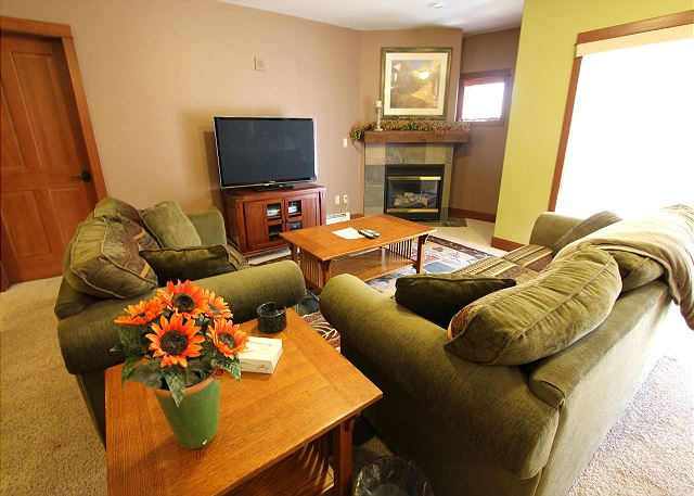 Living room features a flat screen TV, gas fireplace and a queen-sized sleeper sofa.