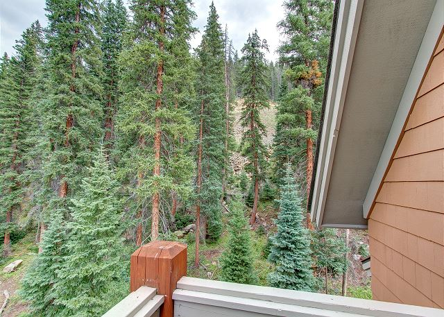 View from Balcony off Master Bedroom