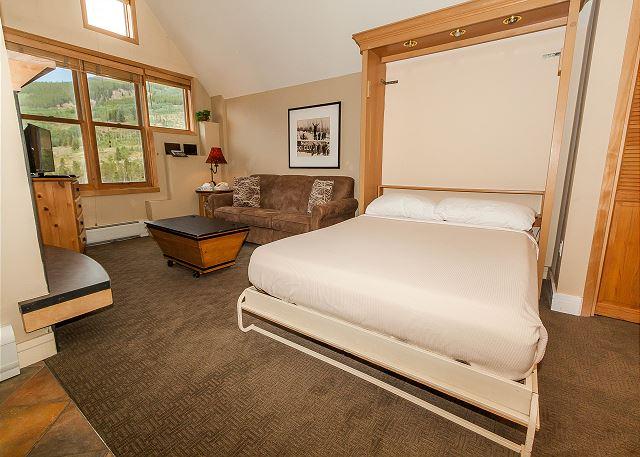 Murphy BedThe living area features a queen Murphy bed and a queen sleeper sofa.