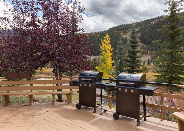 Outdoor Shared Grill Area