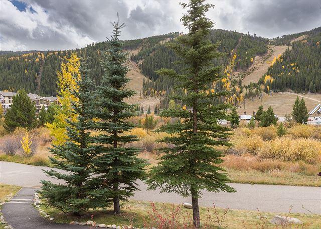 Slope Views from Tenderfoot Lodge
