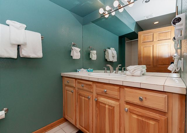 The downstairs guest bathroom.