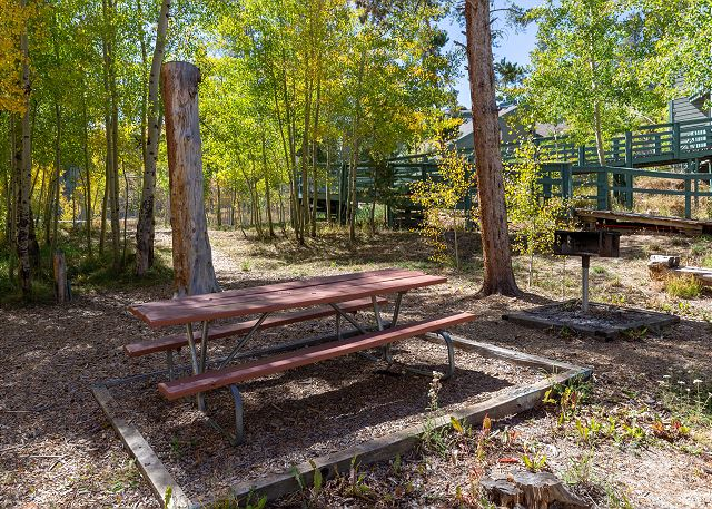 Shared grill and picnic areas