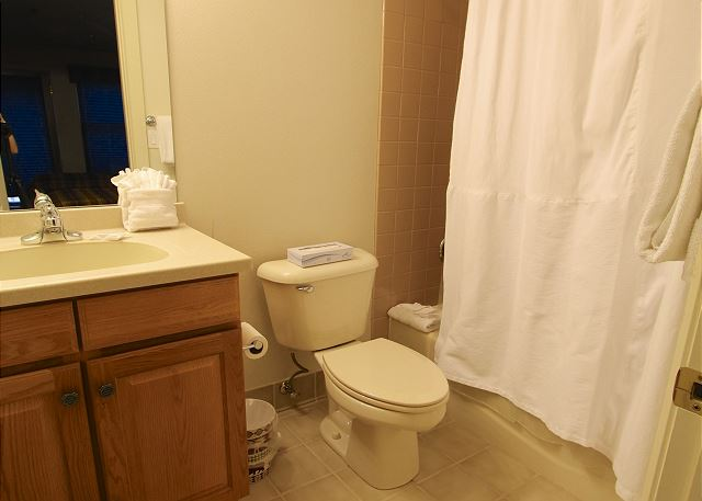 Private bathroom for second lower level guest bedroom.