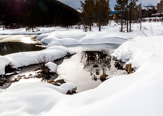Frostfire features mountain views and its location next to wetlands offers great wildlife viewing.