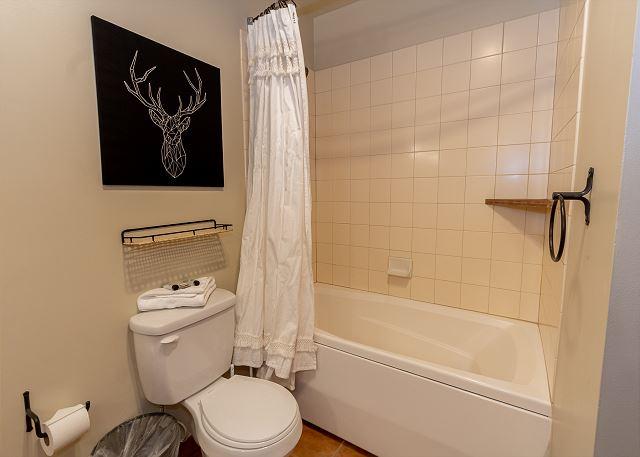 First master bathroom